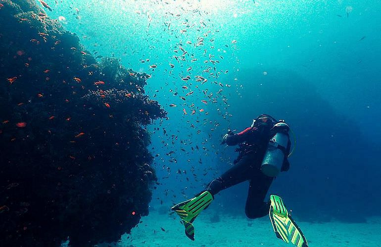 Tagesausflug Tauchen Ab Makadi Bay Tauchen Lernen