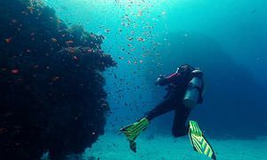 PADI Advanced Open Water Diver, Tauchkurs für Fortgeschrittene in Makadi Bay